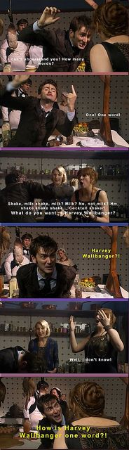 Harvey Wallbanger!?.....one of the best scenes ever between 10 & Donna!
