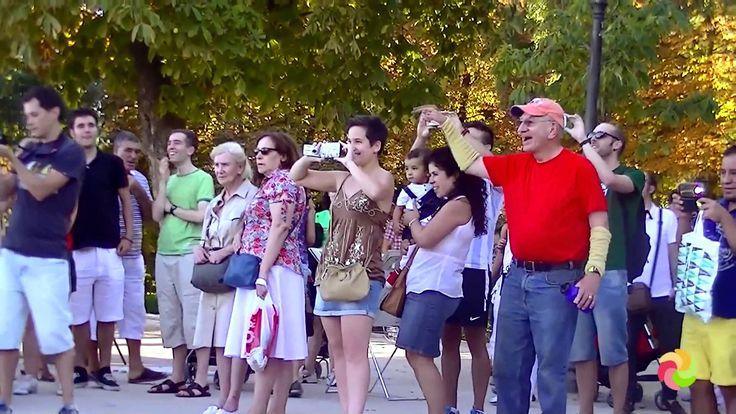 Como pedir matrimonio a tu chica. Flashmob