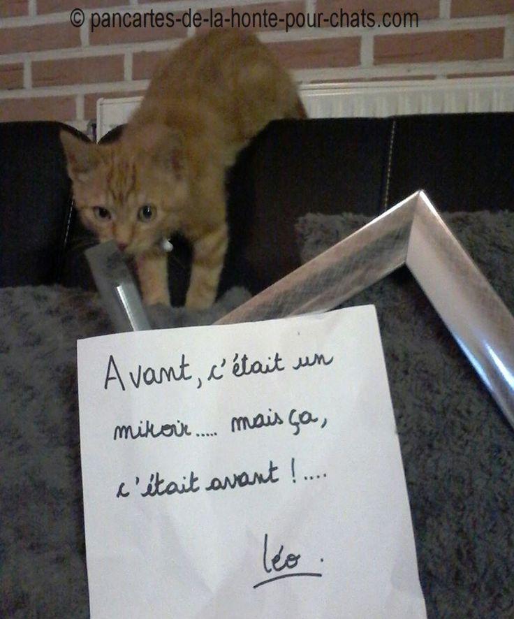 RIP Miroir ^^