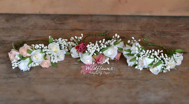 3 floral pretties all in a row!  Which one do you like?  #wildflowerlove…