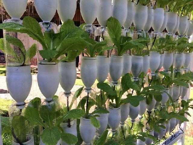 Recycling design flasche  70 besten Recycling Idea Bilder auf Pinterest | Basteln, Drucken ...