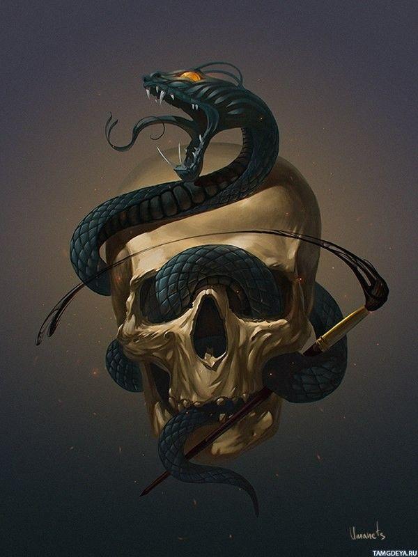 нашем салоне картинки черепа со змеями заказе онлайн