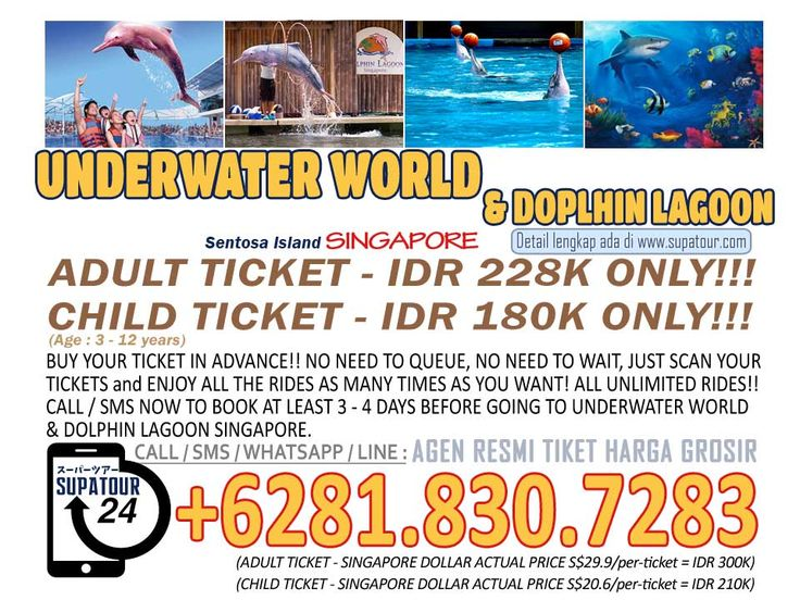 Singapore Admission Ticket Underwater World and Dolphin Lagooon Adult: Rp. 228.000* Child: Rp. 180.000*  For more Info: Supatour and Travel  WhatsApp : +62818307283 http://supatour.com