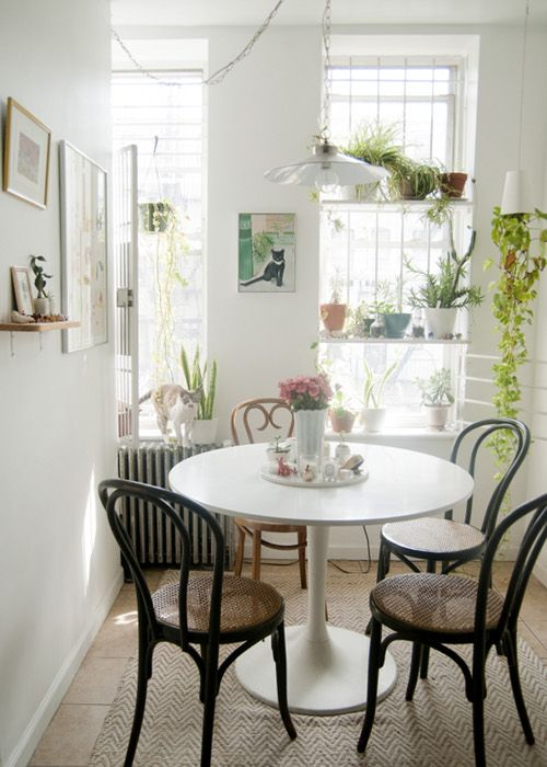 """Sneak Peek: Leah Goren and Dylan Ousley. """"Our dining table is the Docksta from IKEA and the rug is from West Elm. The green bentwood chairs are from a Brooklyn vintage shop, and the one mismatched chair was found on our block."""" #sneakpeek"""
