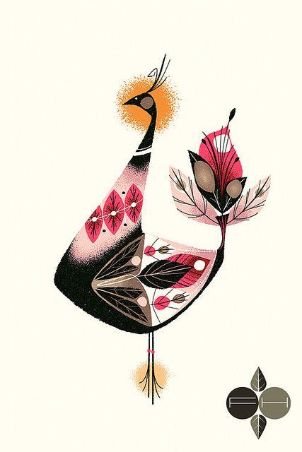 Bird | Illustrator: Fantastic Hysteria - http://cargocollective.com/fantastichysteria