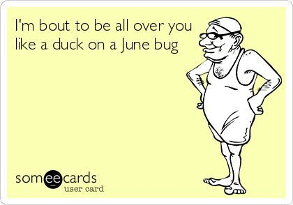Southern Saying: I'm about to be all over you like a duck on a june bug