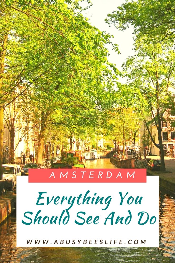Amsterdam: The Liberal City Of Bikes, Coffeeshops, and Canals via @abusybeeslife