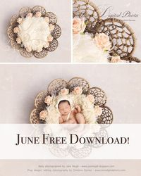 June Free Download! Twine Circles Bowl With Flowers And Light Background - Beautiful Digital backdrop Newborn Photography Prop download - psd with Layers