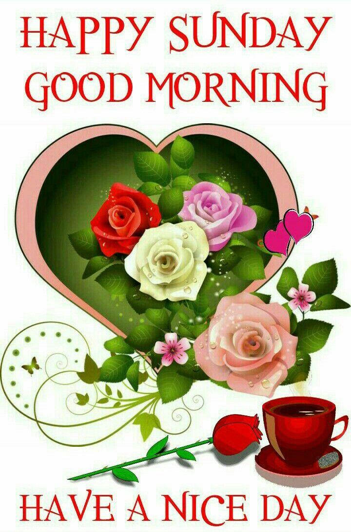 Sunday Blessings J Morning Happy Sunday Morning Sunday