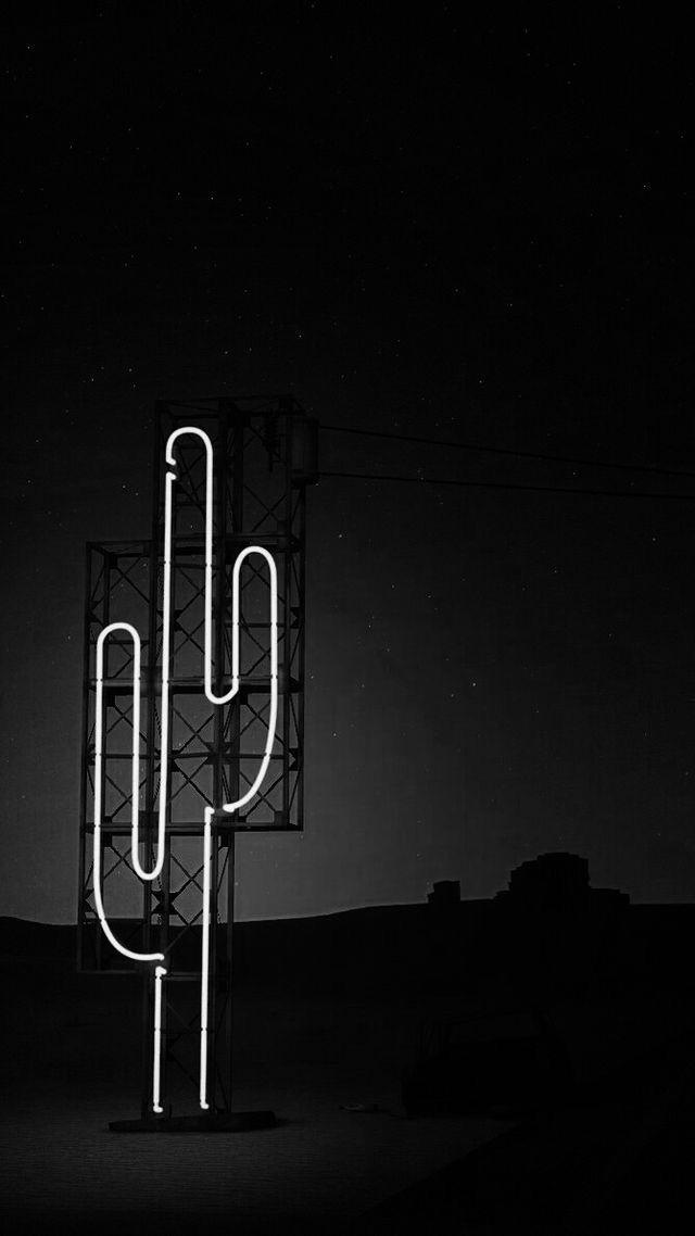 Aesthetic Neon Cactus Wallpaper Iphone Neon Neon Wallpaper