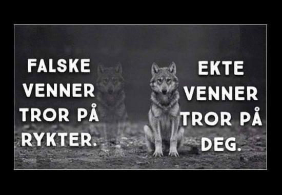 FALSKE VENNER ... | SKUFF.no - Vitser Og morsomme Bilder
