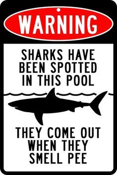 Warning Sharks Have Been Spotted In This Pool Sign by Travelsigns