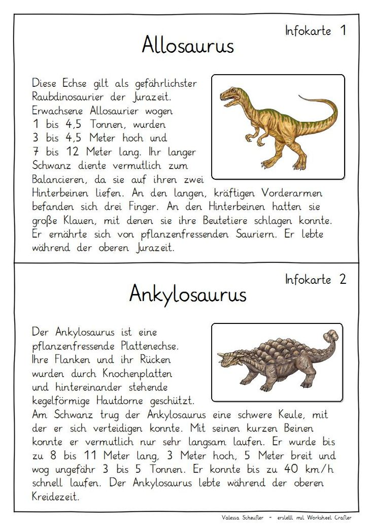 Steckbrief Dinosaurier