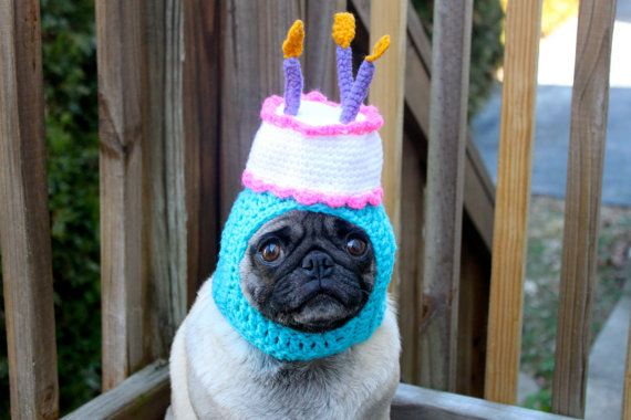 Happy Happy  Birthday Cake Dog Hat / Made To Order by Sweethoots, $32.00