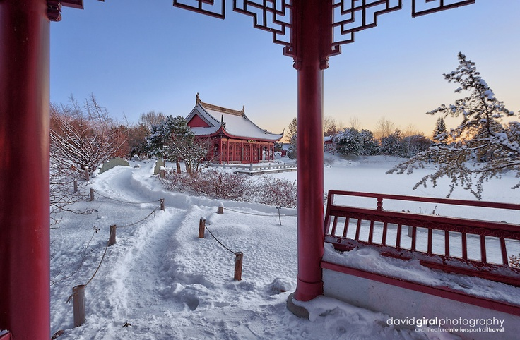 Winter wonderland at the chinese garden of the botanical for Jardin botanique hiver 2015