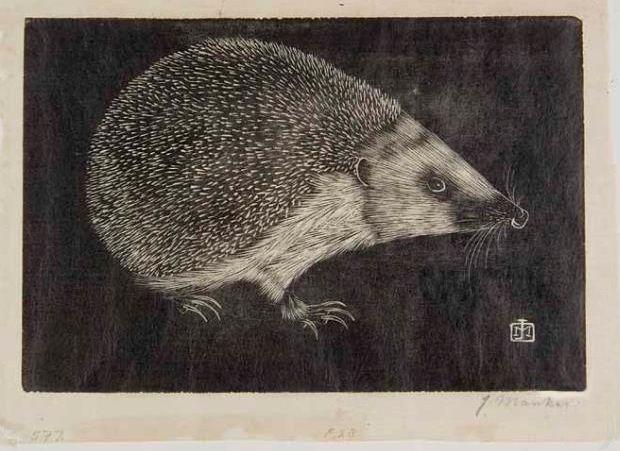 "Jan Mankes (1889-1920) - ""Hedgehog"", 1916. Woodcut.  http://hundred-million-light-years.blogspot.co.uk/2009/09/jmankes.html  Tags: Linocut, Cut, Print, Linoleum, Lino, Carving, Block, Woodcut, Helen Elstone, Dutch, Hedgehog, Spines, Profile, Claws."