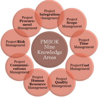 Project management body of knowledge Essay Sample