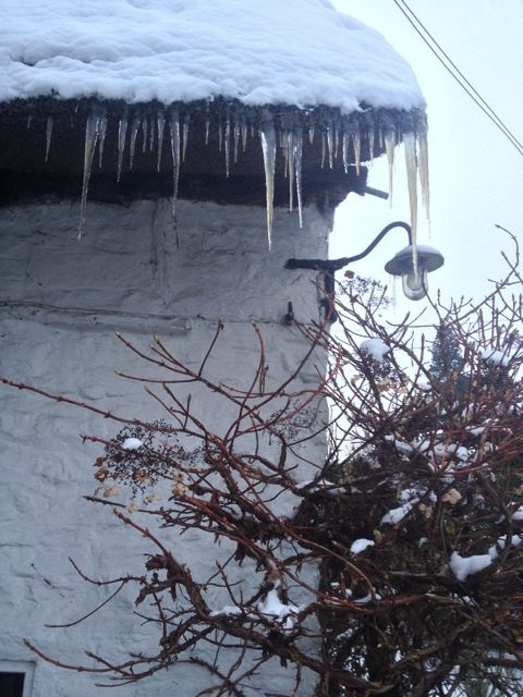 Thatch = icicles