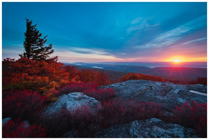 First light from Bear Rocks looking out across the Allegheny Mountains, West Virginia.  by Joseph Rossbach.Favorite Places, Allegheny Autumn, Allegheny Mountain, West Virginia, Bears Rocks, Sod Wilderness, Allegheny Lights, Dolly Sod, Joseph Rossbach