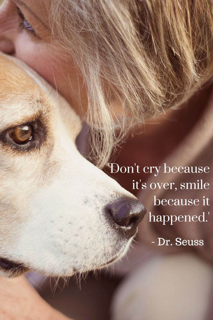 'Don't cry because it's over, smile because it happened.' - Dr. Seuss