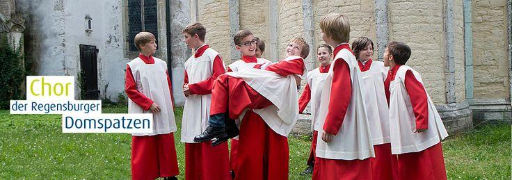 Die Regensburger Domspatzen kommen im Juli ins Zeitzer Franziskanerkloster. A capella vom Feinsten.