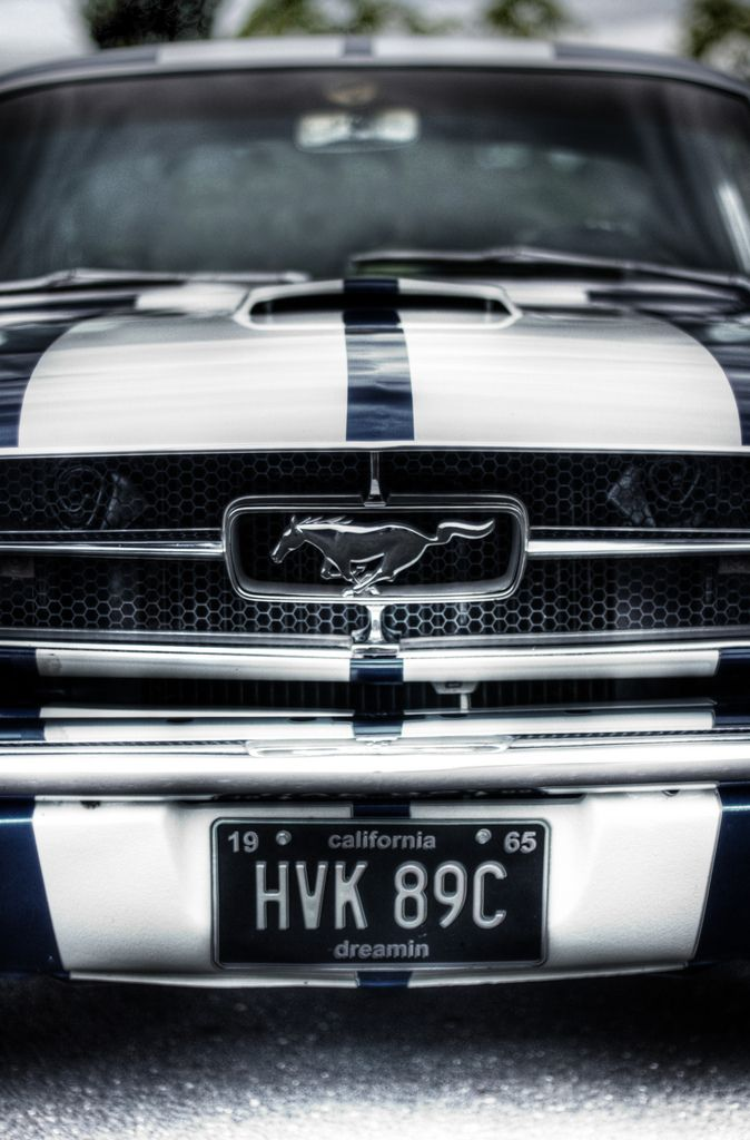 Pony Face | 1965 Ford Mustang | Chris Leithead | Flickr