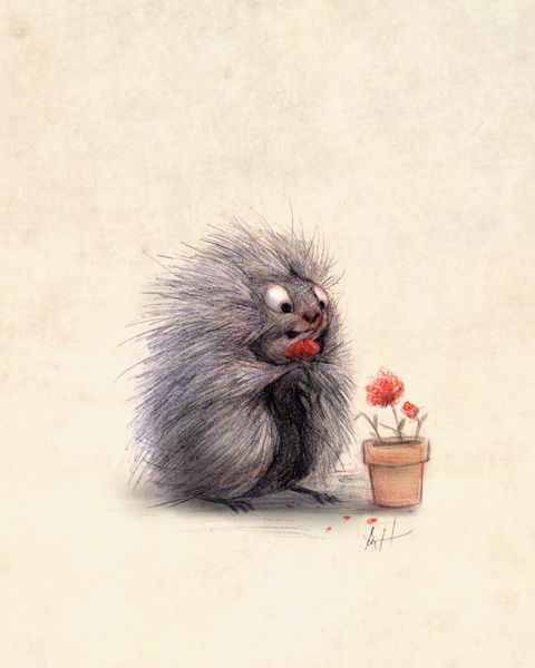 Porcupine Eating Geraniums Art Print by Syd Hanson | Society6
