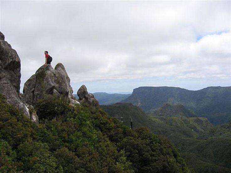 186 Best Paku Lodge Resort Tairua On The Coromandel