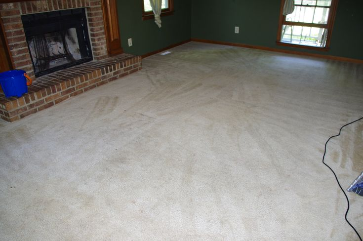 Carpet Cleaning | Carpets, Cleaning and Cleanses