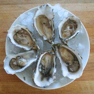 A Photo Guide to Shucking Oysters Like a Pro: Repeat and Serve