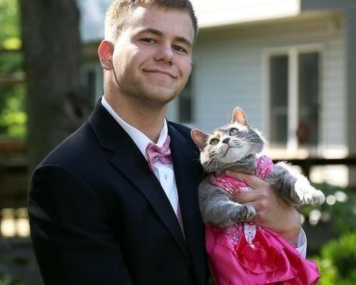 #Spettacoli: #Nessuna ragazza accetta il suo invito: lui porta la sua gatta al ballo di fine anno da  (link: http://ift.tt/1WDYGlh )