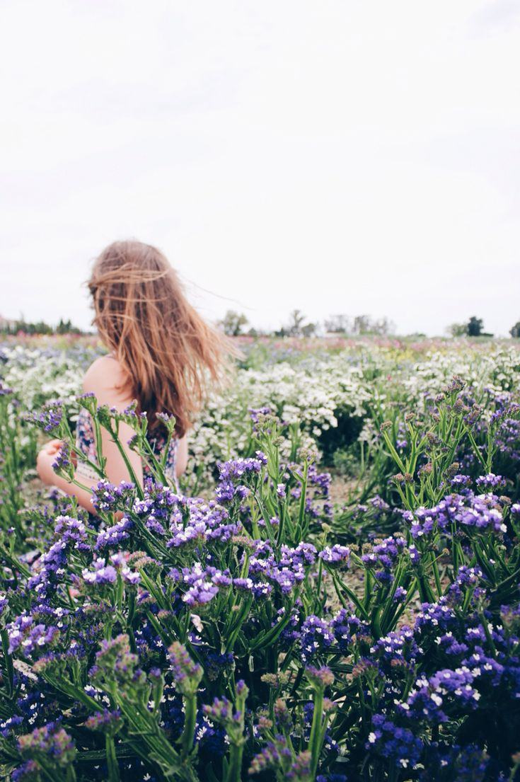 Many eyes go through the meadow, but few see the flowers in it. ~Ralph Waldo Emerson