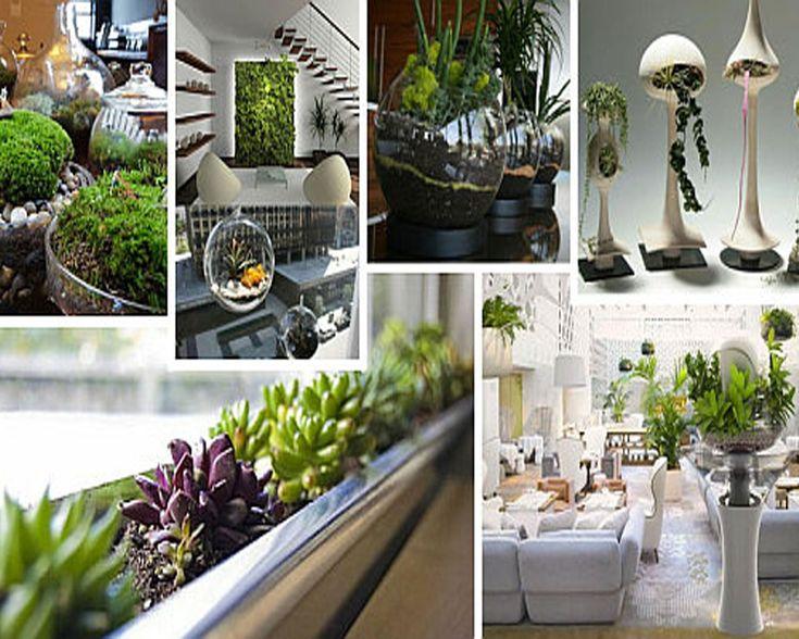 Hydorponics Gardening httphighpower4scomwhyisitso