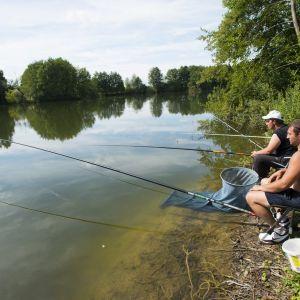 Pêche et détente au bord d'un étang