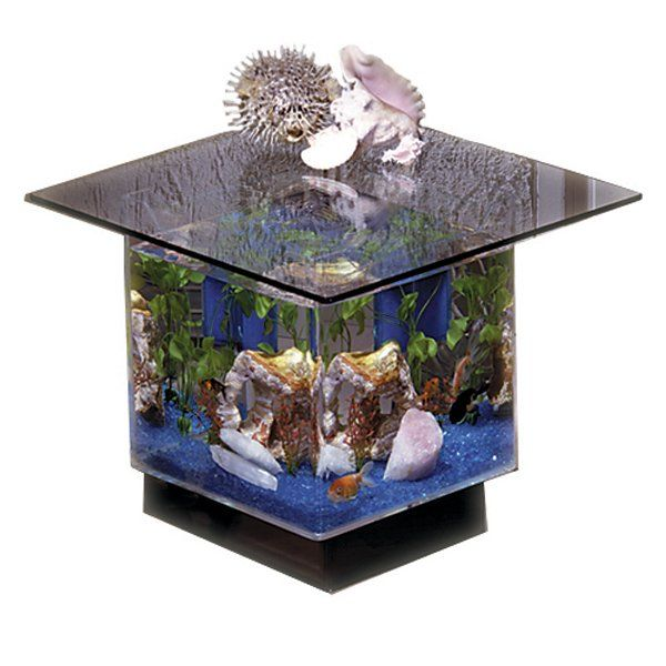 Square Aquarium End Table