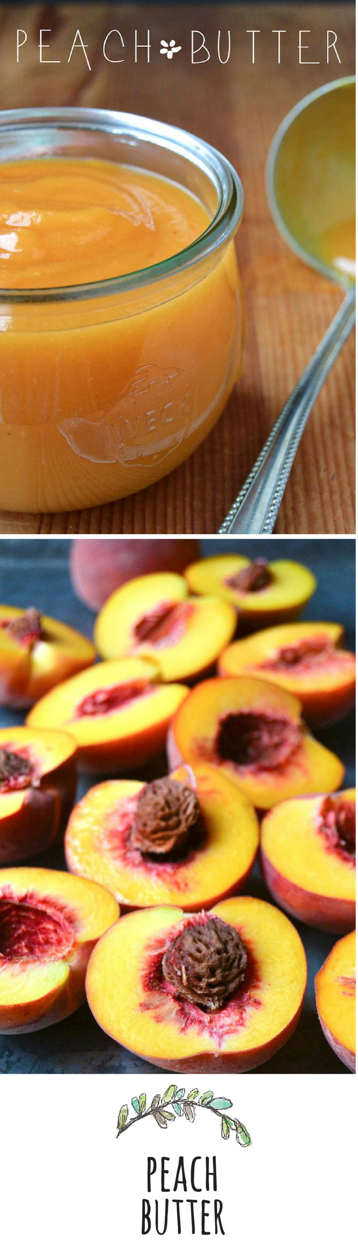 """From Someone who likes to keep her recipes pure -  this one uses little sugar (1/2 cup); Sue chooses to use Lemon Juice to make the PEACH flavor """"pop""""...  TIP: if you like you could add some vanilla bean... **  You won't find a more intense peach flavor anywhere!  #PeachButter   #Pure"""