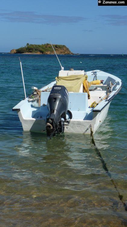 Anse de Tartane - Trinité - Martinique