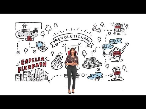 How a Bachelor's Degree in Business Sets You up for a Government Career |  Capella University