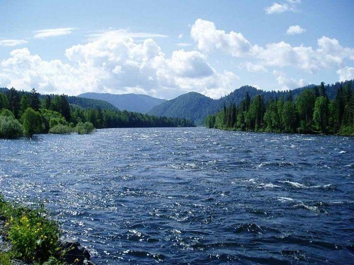 Школьники проведут перепись малых рек России к Году экологии