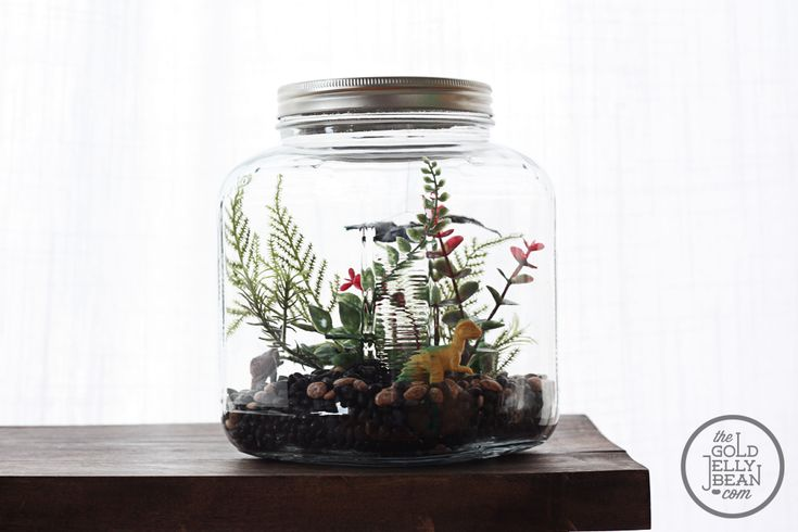Terrariums have become really popular recently, with classes being offered and lots of stores selling them. I wanted to try a kid version. It was a lot of fun to make, Syd loves it, and we u...