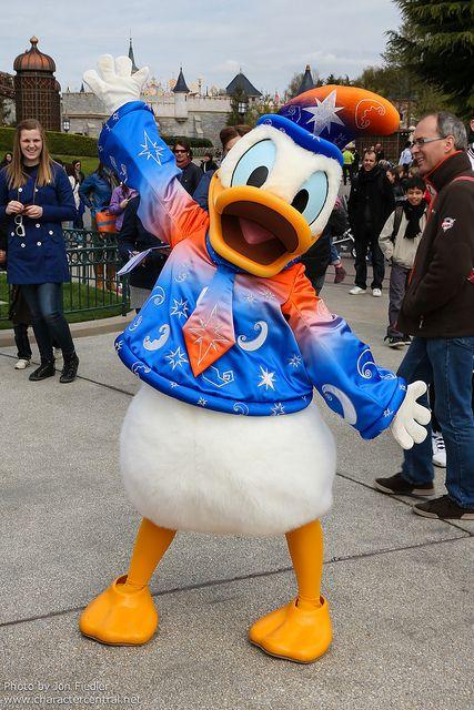 de disney caras de disney disney iii donald duck daisy coisa de
