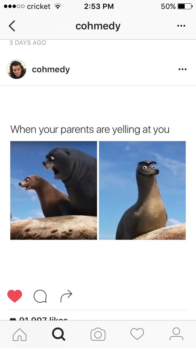 You know, they should have put the pictures the other way around to make it look like they're yelling at Gerald.