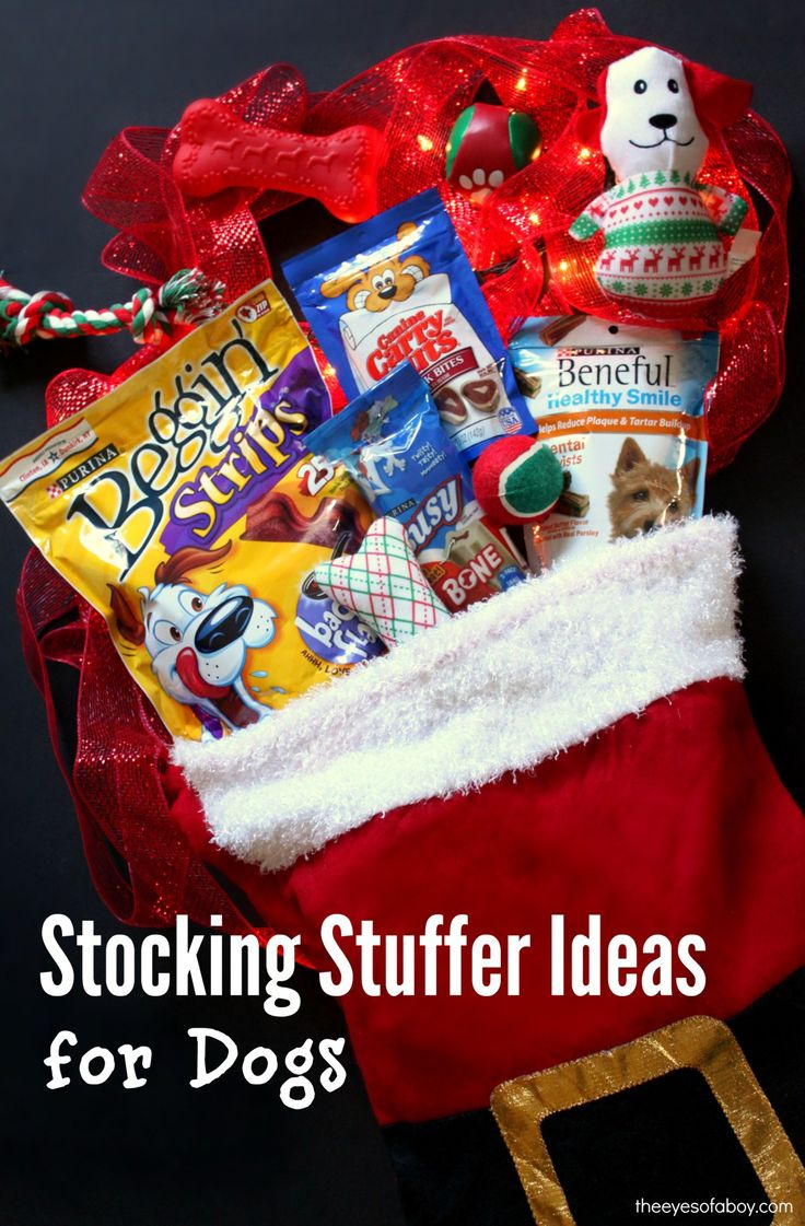 Stocking Stuffer ideas for Christmas for Dogs gifts