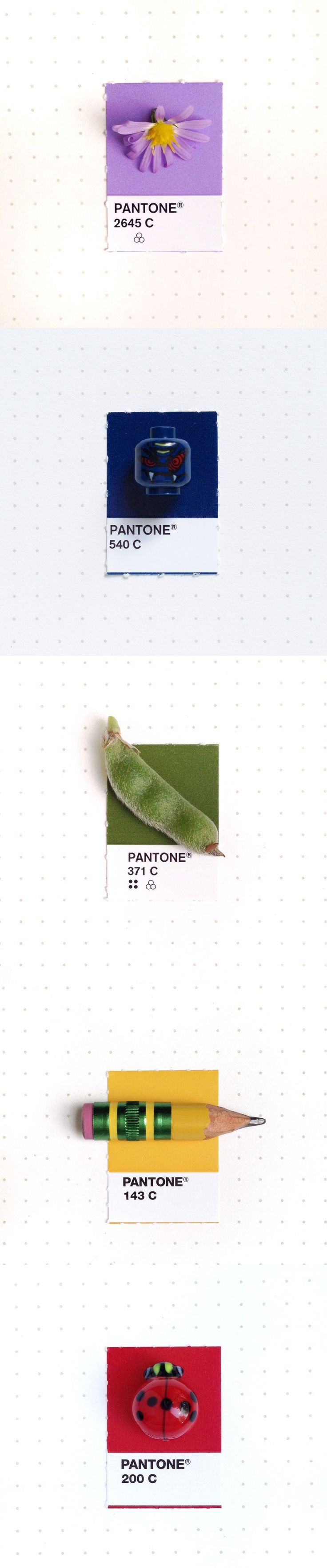 "Designer Inka Mathew color codes the trinkets in her life according to her Pantone Matching System swatch book for a personal project she calls ""Tiny PMS Match""."