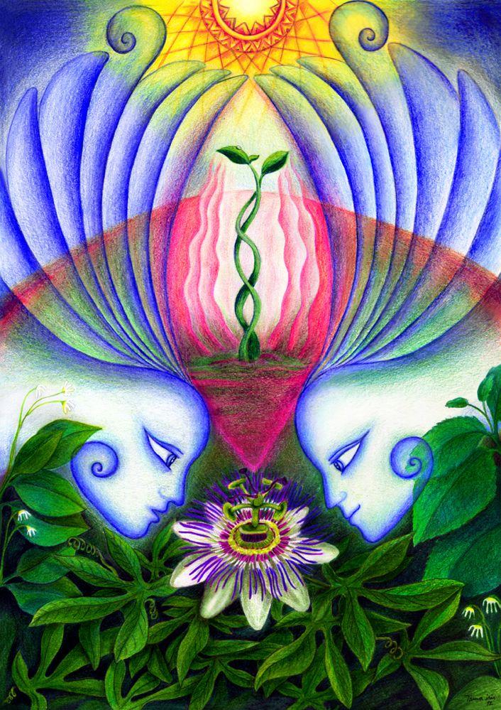 #tamairis #pasiflora #passionflower #angels #seed #growing #creciendo #illustracion #illustration #painting