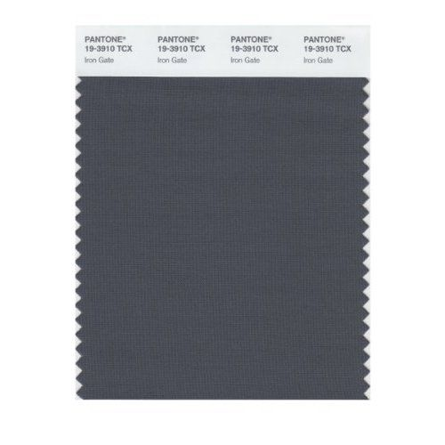 Pantone 19 3910 Tcx Smart Color Swatch Card Iron Gate