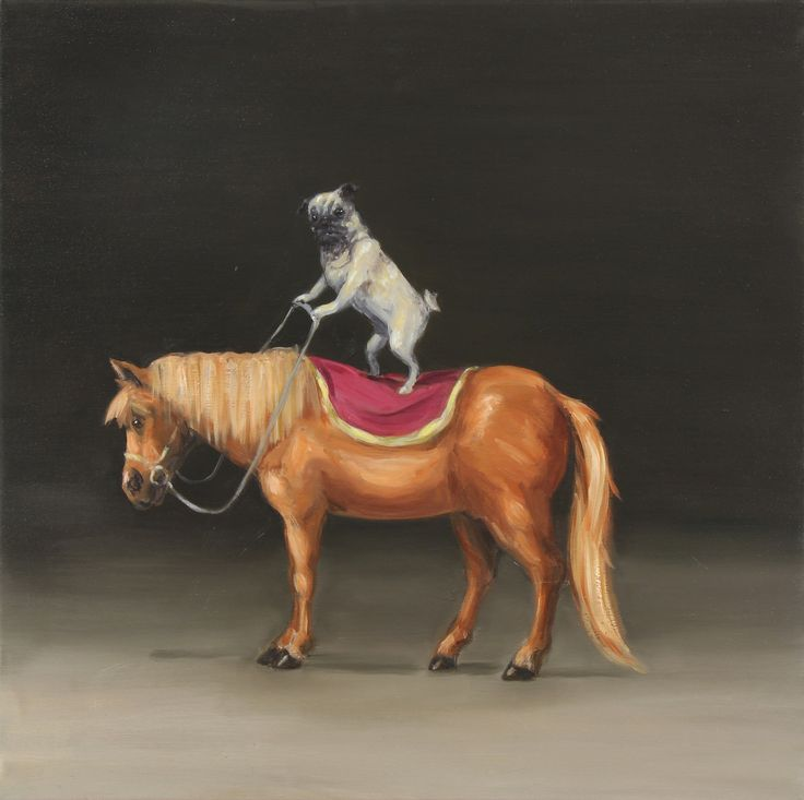 joanna braithwaite giddy up #2 (2015)  oil on canvas, stretcher: 613 x 609 x 22 mm