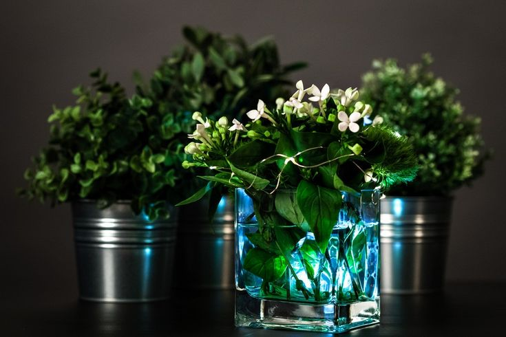 Diy floral centerpiece with submersible lights