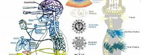Los Chakras son vórtices de energía a través del cual fluye la fuerza de vida a través de nuestro ser. Cada uno de lo chakras correspond...