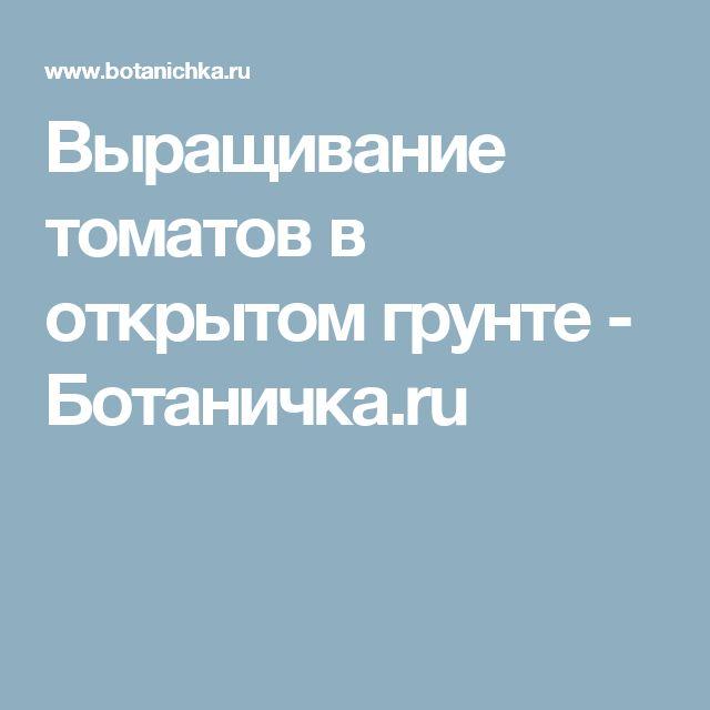 Выращивание томатов в открытом грунте - Ботаничка.ru